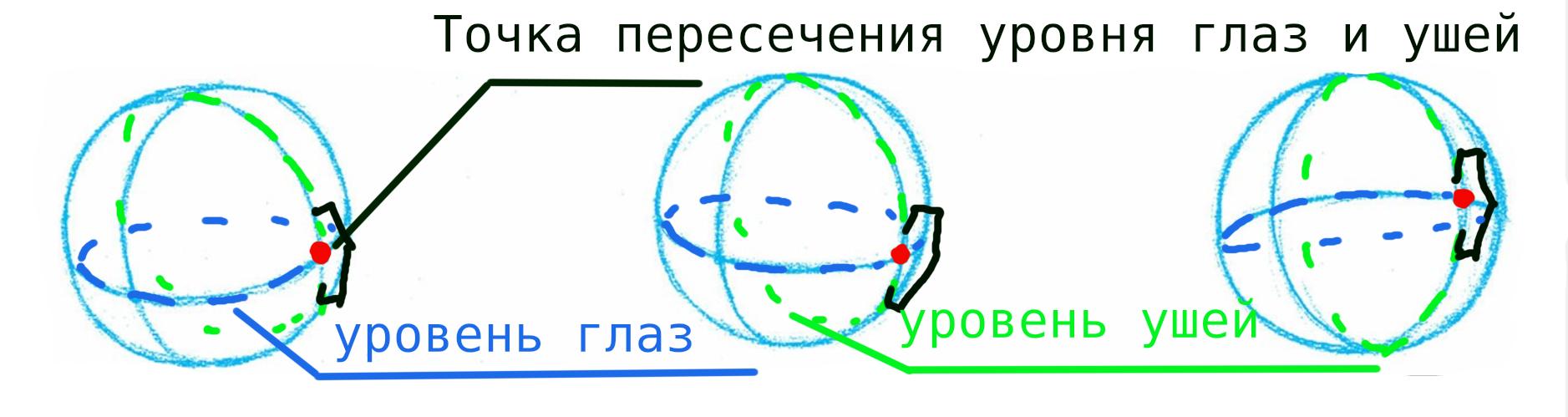 Место расположения уха
